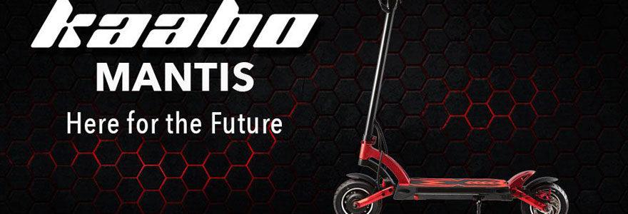Trottinette électrique Kaabo Mantis K800, Trottinette électrique confortable, Trottinette électrique adulte, Trottinette électrique puissante, Trottinette électrique légère, meilleure trottinette électrique, Kaabo, Minimotrs, Dualtron , Okai